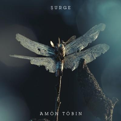 amon tobin | ACID TED