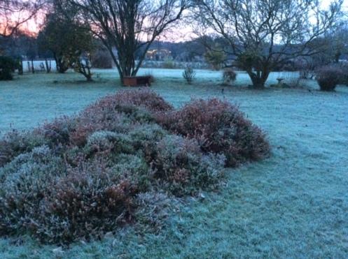 hampshirefrost