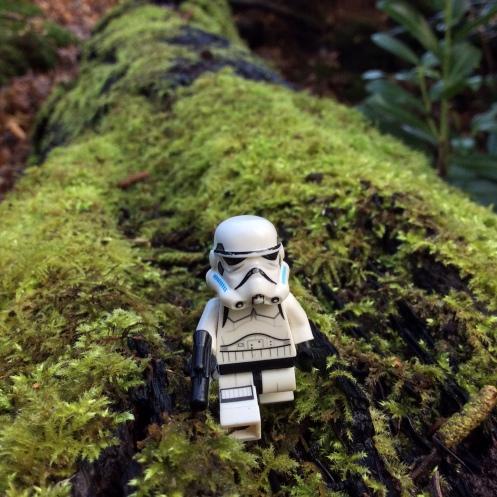 Storm trooper moss