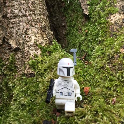 Boba Fett tree moss